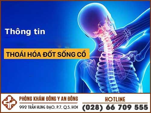 thoai hoa cot song co